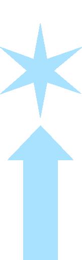 icon_arrow_star
